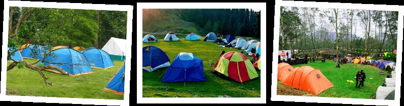 event sewa tenda camping di bali harga pricelist